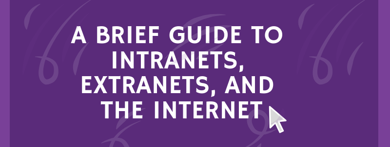 a brief guide to intranets extranets and the internet